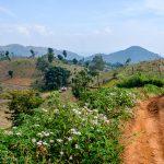 myanmar-hsipaw-trekking-3246